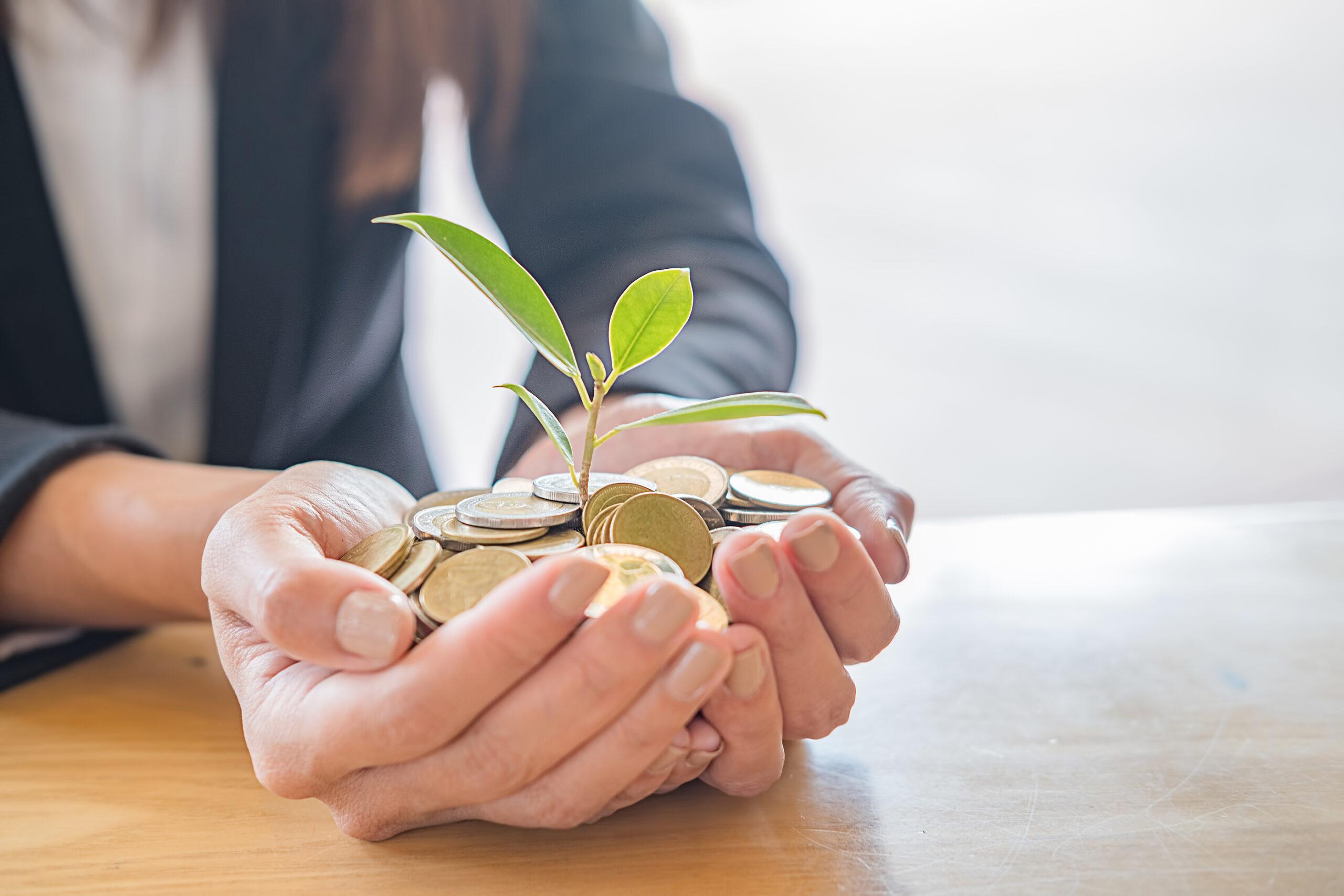 Coronavirus SME Loan Guarantee Scheme 2.0
